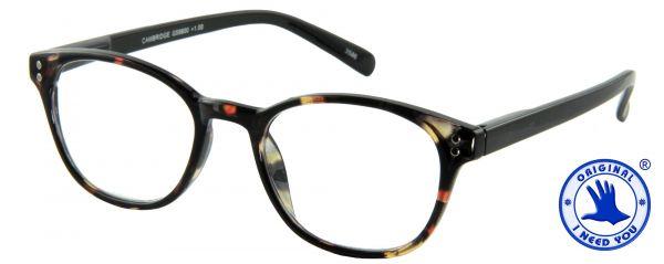 Leesbril Cambridge - Havana zwart - Inclusief Etui