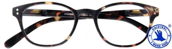 Leesbril Cambridge - Havana bruin - Inclusief Etui